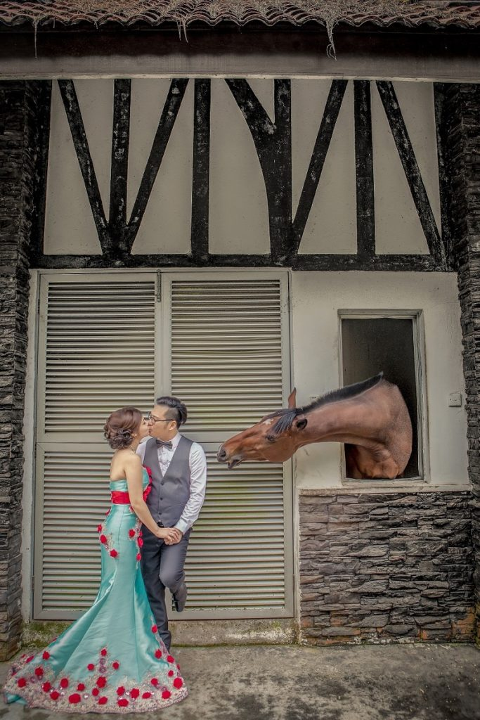 horse is the witness of love