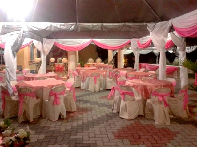 pink canopy