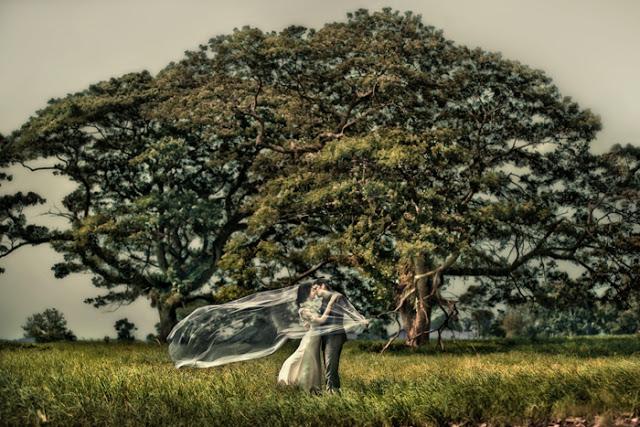 overseas classical wedding