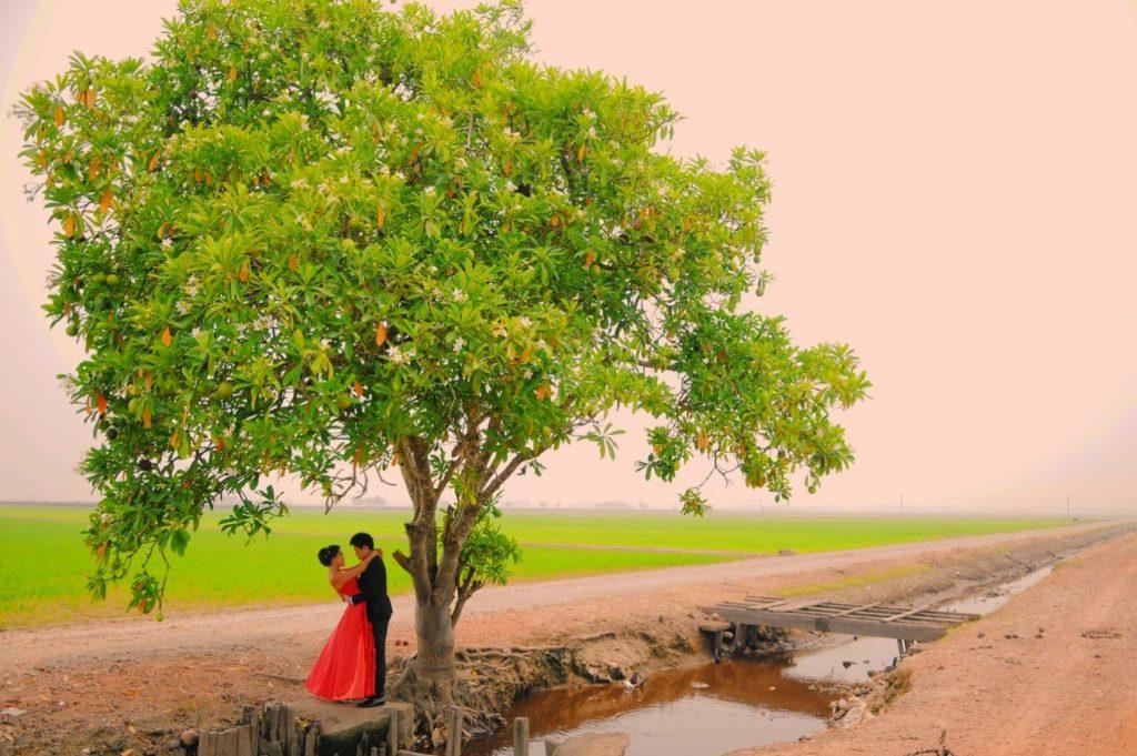 big tree nature selangor photoshoot