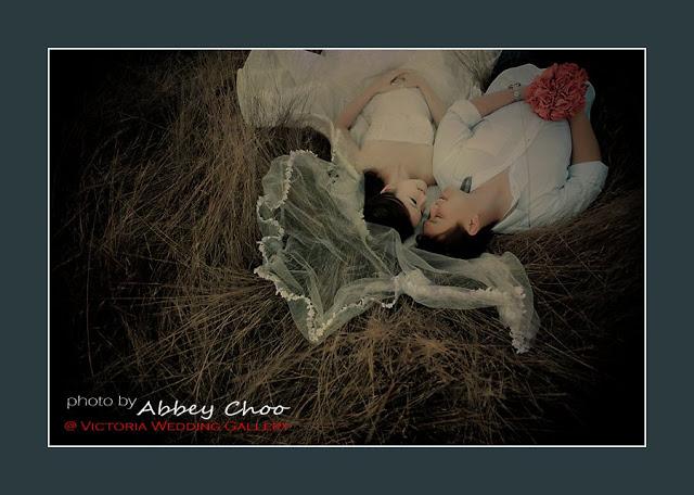 abbey choo photo lying on hays
