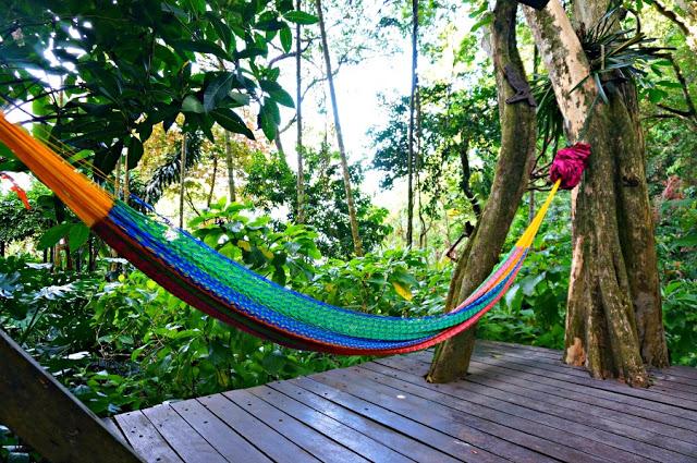 colorful hammock tropical spice garden