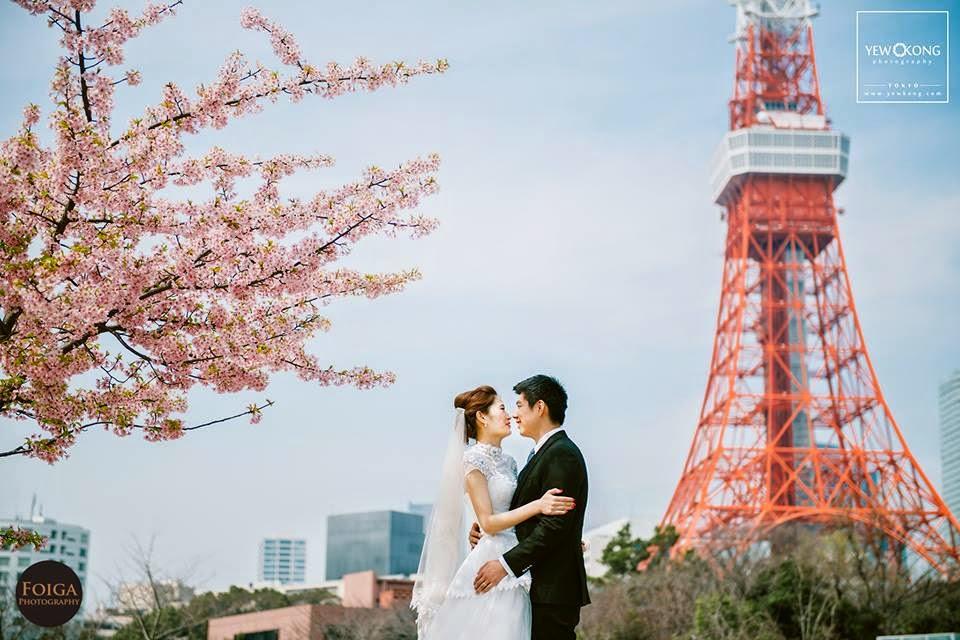 cherry tree couple blue sky