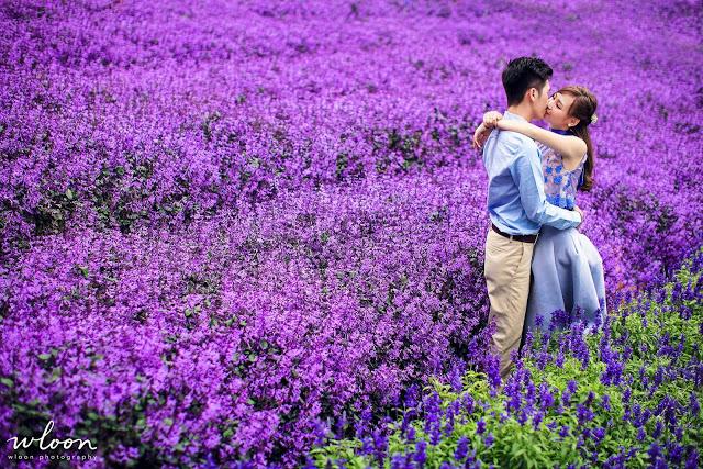 gorgeous lavender wedding in cameron wedding